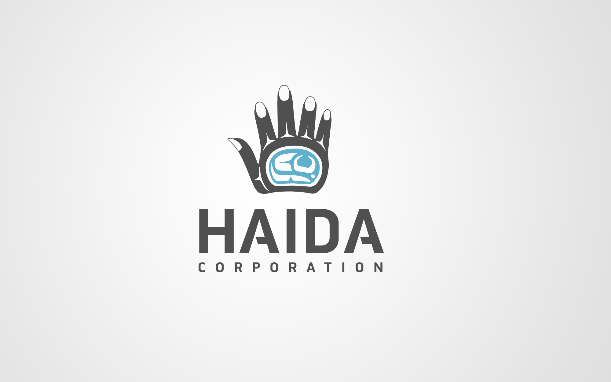 2014_haidacorporation_1